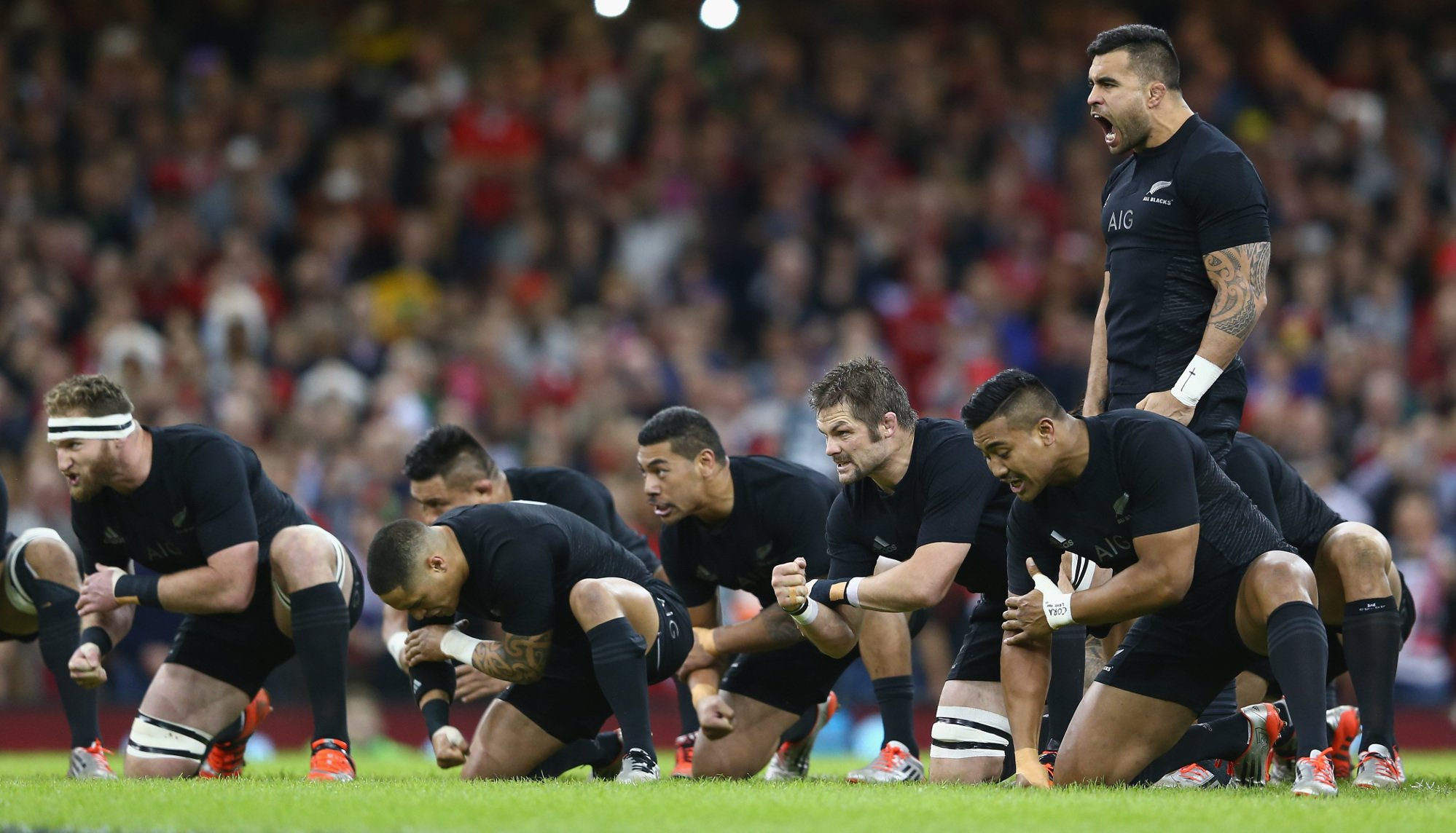 New Zealand Rugby vetting plans scream of arrogance