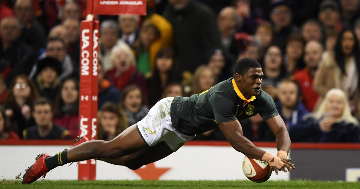 Springbok fullback Gelant ruled out of 2021 Lions tour - RugbyPass
