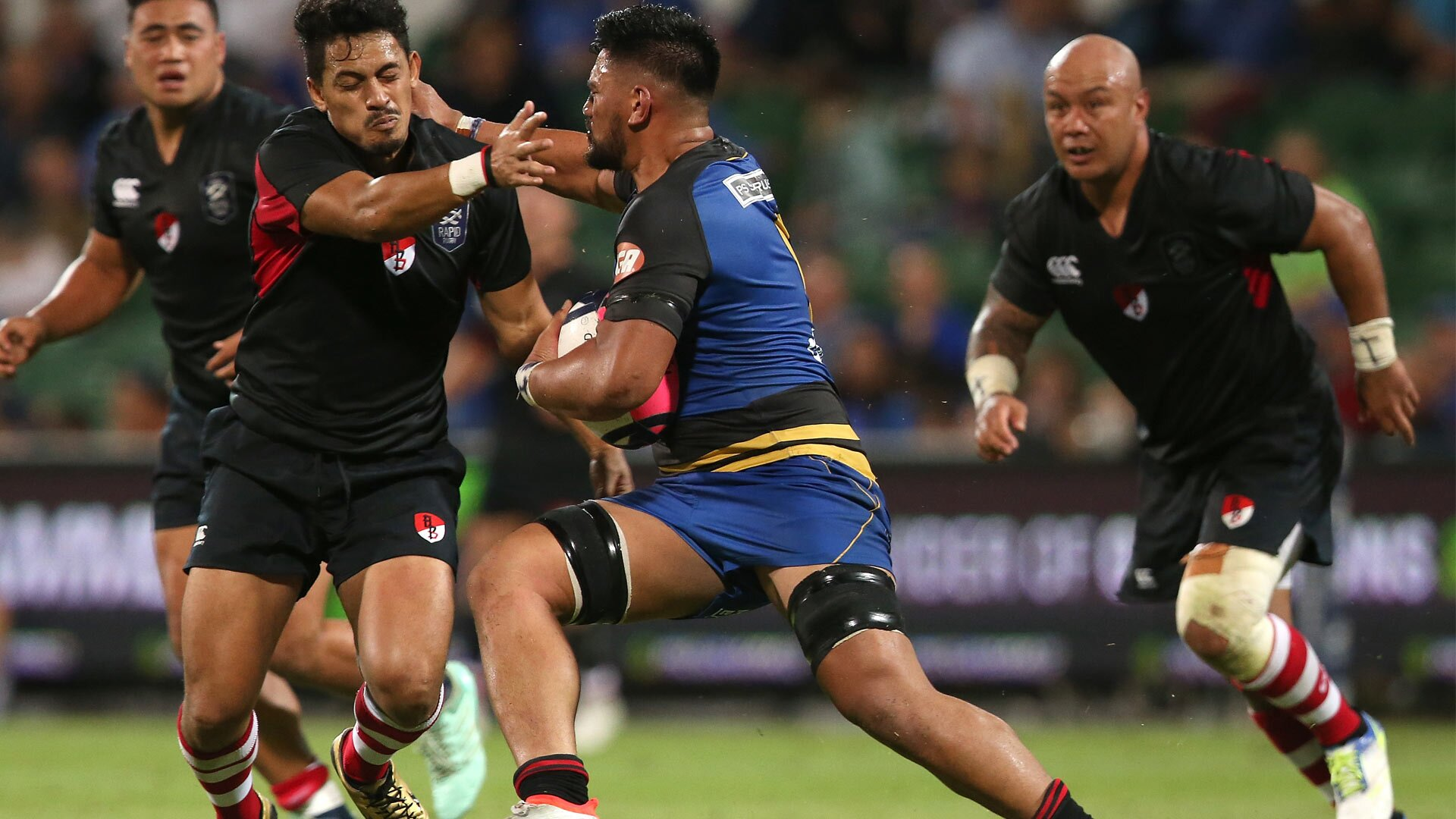Western Force claim another big win