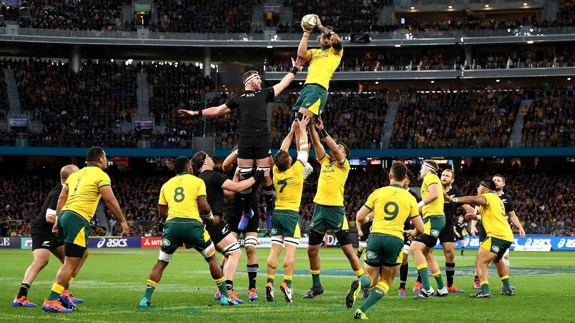 The star players, key facts and who will win: All you need to know about All Blacks vs Wallabies