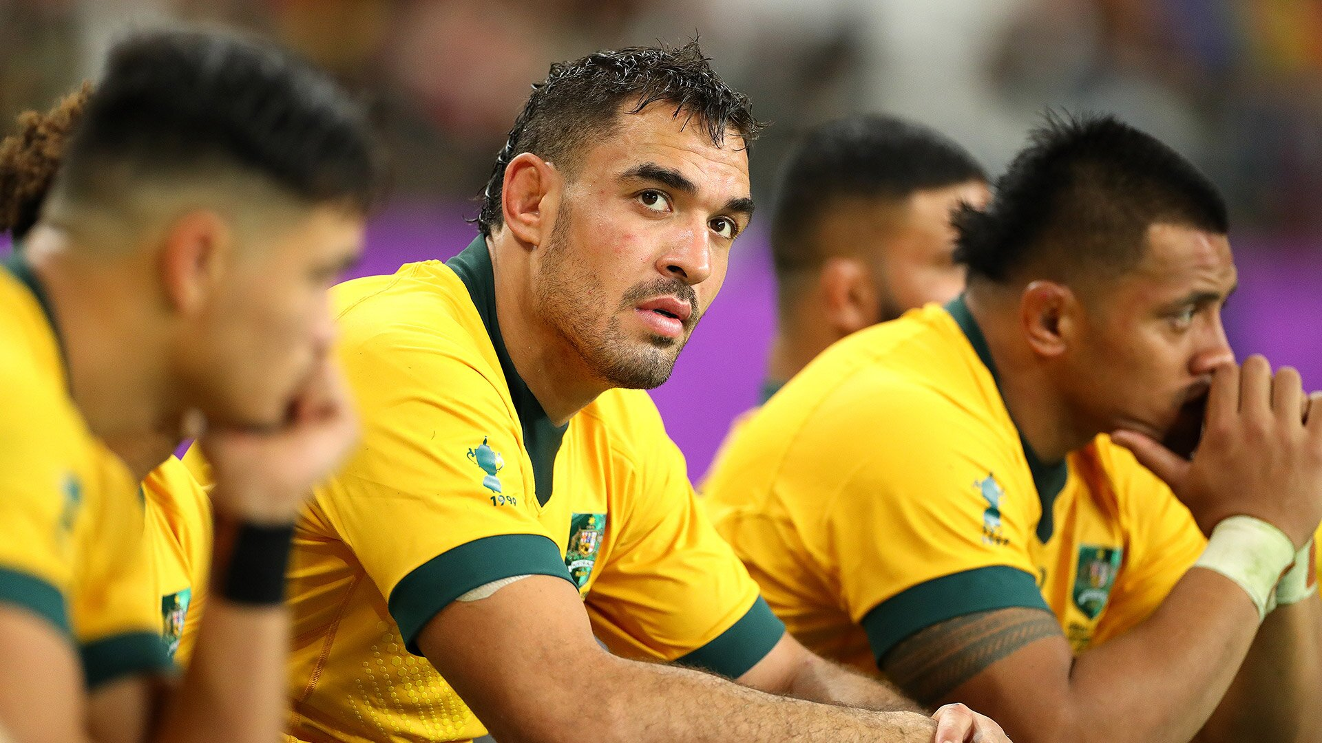 Wallabies forced to assess player options for Rugby Championship following injury to offshore star