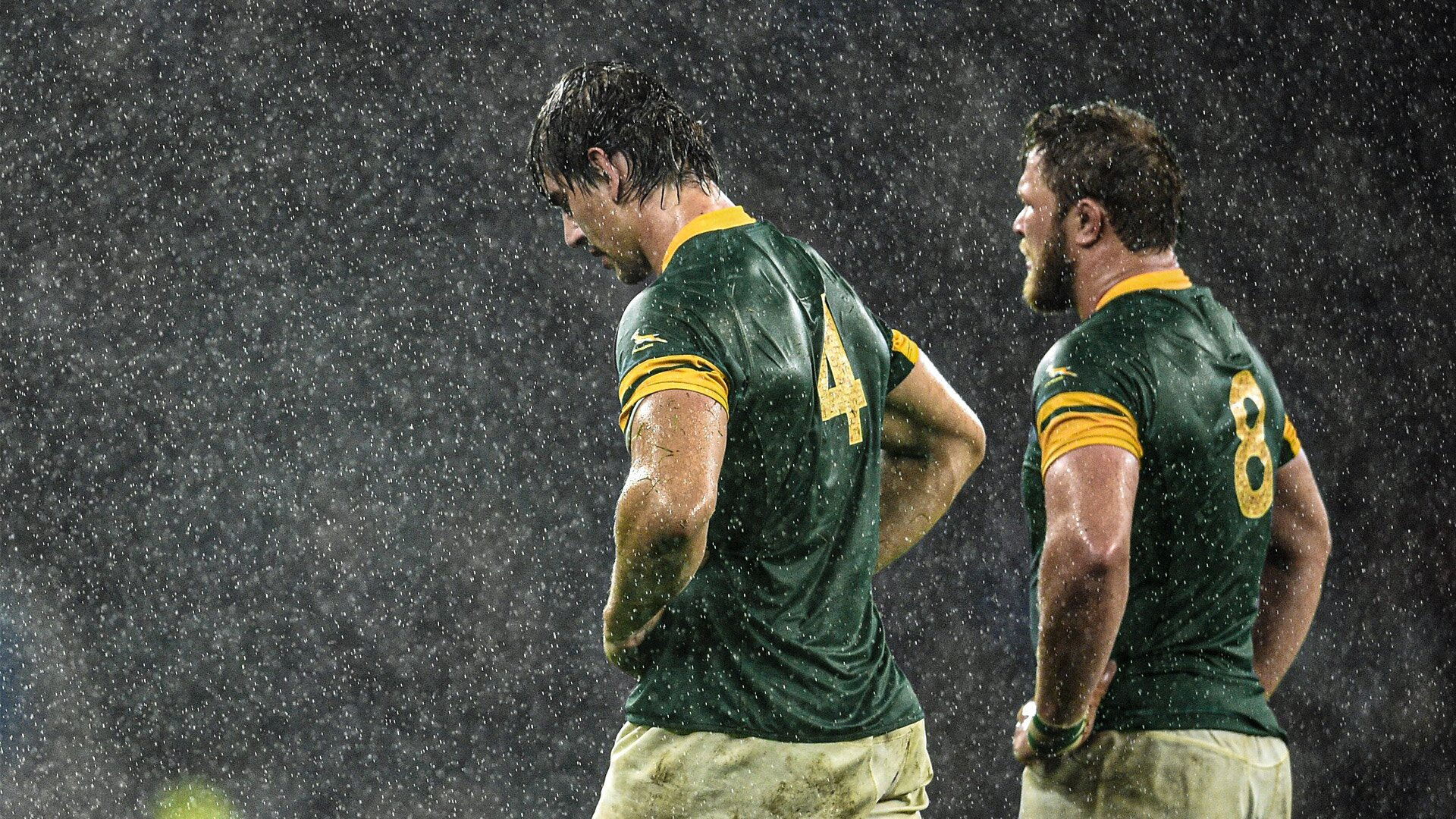 Report: South Africa to withdraw from opening rounds of Rugby Championship